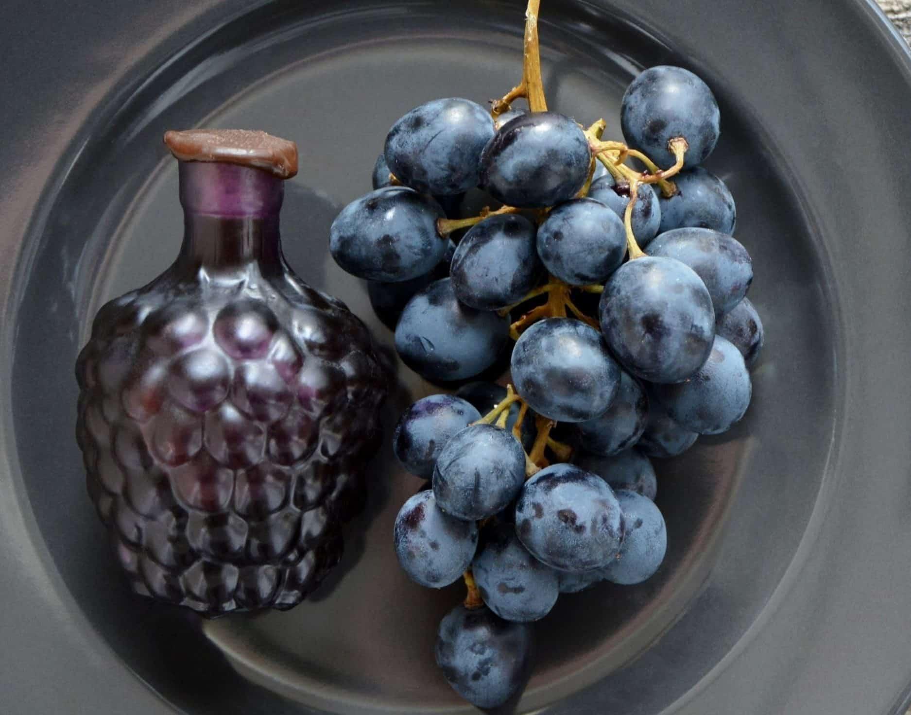 vinograd3 min